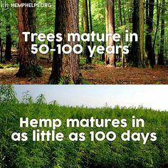 Use hemp