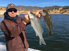 Castaic Lake Bass Fishing Guide Service - 11/19/2017 - Beautiful cool conditions this morning with a light breeze throughout much of the day. Here is Dwight who fished with me last weekend and is back on his guided fishing trip this morning with Rich Tauber Fishing at Castaic Lake in Castaic California. Mixed bag of largemouth and striped bass.