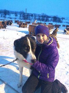 Amazing! Benedikte visiting 300 Alaska Huskyer om Tromsø Villmarksenter. http://villmarkssenter.no/?lang=no