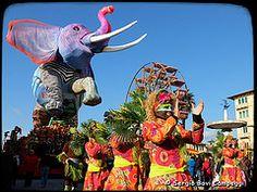 Carnevale di Viareggio [DSCF6230]