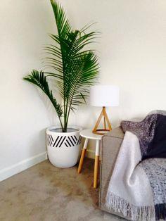 Hatch Lines Pot, Indoor Pots_Funky Homes_houseofhome.com.au Living Area, Living Room, Plant Sale, Room Style, Indoor Plants, Planter Pots, Homes, Inside Plants