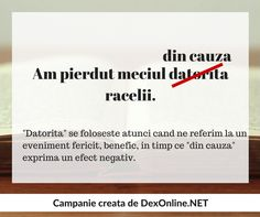 Dexonline promoveaza limba romana vorbita corect #salveazalimbaromana #gramatica Grammar, Parenting, Teaching, Education, School, Language, Literatura, Culture, Romania