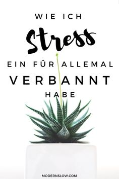 Ich habe mein Leben nachhaltig entschleunigt und so Stress ein für allemal aus meinem Leben verbannt. Erfahre wie auf Modern Slow. | modernslow.com