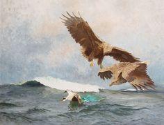 Eagles Bruno Liljefors