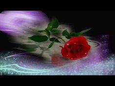 ♫♥♫ Życzenia urodzinowe - Białe konwalie na szczęście... ♫♥♫ - YouTube Youtube, Plants, Plant, Youtubers, Youtube Movies, Planets