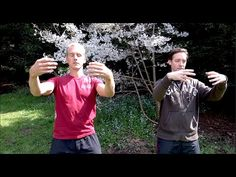 Here are some very traditional Qigong or Chi Kung Postures to practice Every Morning! :) These are the kind of real qigong poses or p. Tai Chi Qigong, Training Schedule, Pranayama, Martial Arts, Qi Gong, Poses, Youtube, Exercise, Health