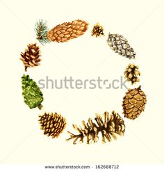 Invitation card with pine cones 1 - stock photo