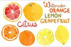 Watercolor vector citrus fruits Font  https://designbundles.net/free-design-resources/watercolor-vector-citrus-fruits/rel=yMUcoi