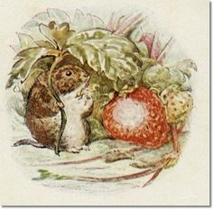 beatrix-potter-the-tale-of-johnny-town-mouse-1918-one-place-suits-one-person-another-place-suits-another-person.jpg (500×492)