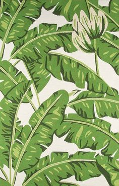 Escape to a tropical island with the Momeni Veranda Indoor/Outdoor Area Rug , which features an oversized bright green palm leaf design on a soft. Banana Palm, Green Banana, Modern Tropical, Tropical Style, Tropical Decor, Indoor Outdoor Area Rugs, Outdoor Rooms, Outdoor Dining, Patio Rugs
