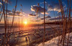 Wintersonne am Achterwasser  #Usedomer