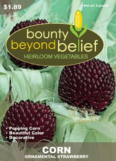 Heirloom+Vegetable+Seed+Catalogs | this catalog has no sub catalogs