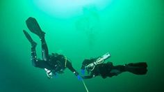 New Year's Day Dive Halifax Now Added To Our Event Calendar