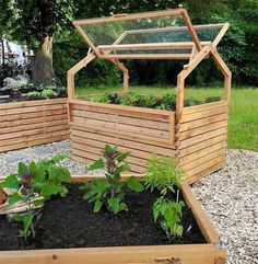 This wonderful DIY mini greenhouse raised garden bed can be made with pallets. Use reclaimed wooden frames for the covering with suitable glass. #diybedframeswithpallets