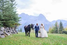 Happily ever after. This looks like it's out of a fairy tale. Photography by Jessilyn Wong Photography Wedding Theme Inspiration, Wedding Themes, Wedding Colors, Wedding Decorations, Camp Wedding, Dream Wedding, Wedding Supplies, Party Supplies, Mountain Elopement
