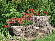 tree stump flower pots