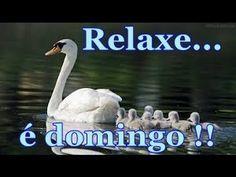 Feliz domingo te desejo alegria saúde e paz de Espirito - Mensagem de Domingo - YouTube
