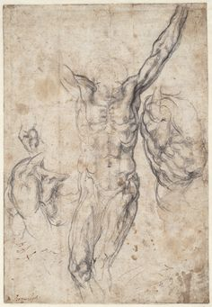 Michelangelo  Studies for Sistine ceiling - Creation of Adam  ca. 1511  drawing  Teylers Museum, Haarlem      Michelangelo  Studies for Si...