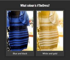 Dress yellow white or black blue Yellow And White Dress, Blue Yellow, Black And White, Optical Illusions, Red, Sweaters, Colour, Dresses, People