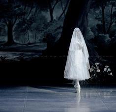 "The Mikhailovsky Theatre's ""Giselle"" // (c) Nikolay Krusser"