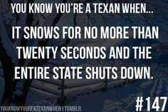 Yes most southerner's have no idea how to drive in it, but most can't drive in the rain either Lol, Texas Weather, Texas Humor, Texas Funny, Texas Meme, I Laughed, Miss Texas, Of My Life, Laughter