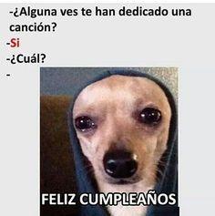 New memes en espanol humor mexico frases ideas Mexican Funny Memes, Funny Spanish Memes, Spanish Humor, Stupid Funny Memes, Funny Animal Memes, Funny Animals, Hilarious, Blackpink Memes, New Memes
