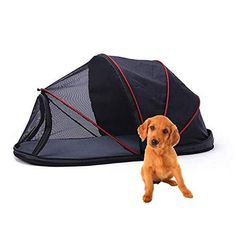 20 Camping With Dogs Tips and Ideas - Best Dog Camping Gear Dog Tent, Camping Gear, Outdoor Camping, Pet Travel, Pet Mat, Dog Houses, Dog Care, Animals For Kids, Best Dogs
