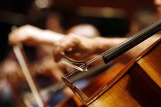 Previous year 2013-The Richmond Symphony is celebrating the start of its new season with Symphony Week.  It's the second year for the Richmond Symphony to host a week of events counting down to its opening concert of the season.