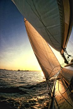 Reminds me of sailing to Catalina with our spinnaker up and the rail in the water. Oh how I miss those days!!