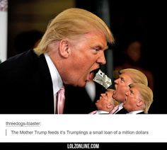 How Trump Got His First Small Loan #haha #funny