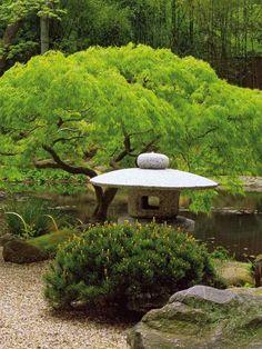 jardin japonais, pagode en pierre naturelle, arbres, pierres et graviers