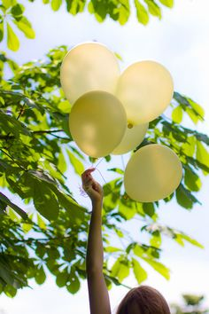 balloons in the nature