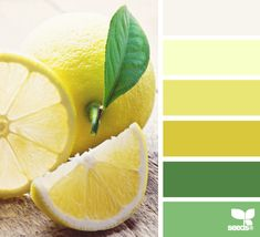 citrus brights Color Palette by Design Seeds Colour Schemes, Color Combos, Color Patterns, Design Seeds, Color Palate, Colour Board, World Of Color, Color Stories, Color Swatches