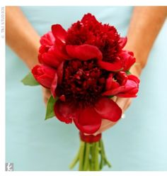 Small red bouquet