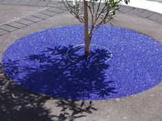 CrystalPave™ was used as the decorative and permeable solution to this treepit in Kempsey. Treepit / Tanzanite.