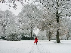 Reminds me of a film I was in, the girl in the red coat.