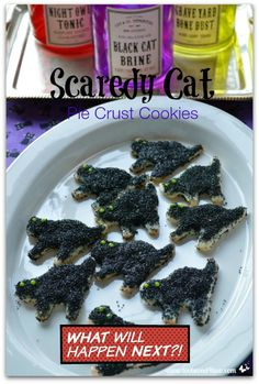 Scaredy Cat Pie Crus