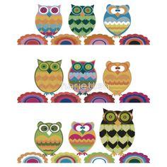 Owls - Class Photo
