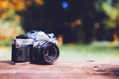 40 Sprawdzonych Stron, z których pobierzesz Darmowe Zdjęcia