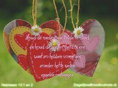 Houd de onderlinge liefde in stand en houd de gastvrijheid in ere. Want zo hebben sommigen zonder het te weten engelen ontvangen. Hebreeën 13:1-2  #Liefde  https://www.dagelijksebroodkruimels.nl/hebreeen-13-1-2/