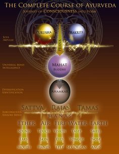 Beautiful chart on the creation of life, according to the Ancient Vedic texts...