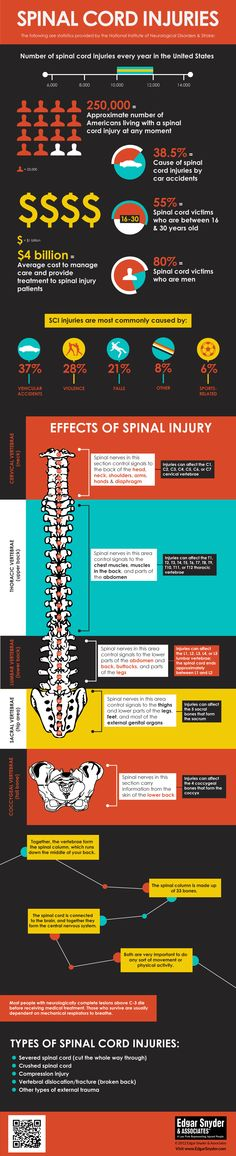 Information on spinal cord injuries (SCI), statistics, facts, and more. info graphic, safety, spinal cord injury statistics
