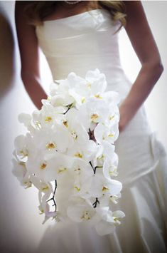 wedding flowers orchids- i love these with some small yellow flowers or blue orchids
