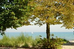 Gillson Park | Wilmette Park District~ Sheridan Road and Michigan Avenue 59.2 acres  Lakefront Conditions (recorded information): 847-256-0333 Beach House: 847-256-9660 Lakeview Center in Gillson Park: 847-256-9656  Gillson Beach, Swimming, Lakeview Center, Sailing, Sailboat Rentals, Lighted Tennis Courts, Softball, Fitness Course, Picnic Areas, Picnic Shelter, Tot Lot, Wallace Bowl, Lighted Ice Rink, Dog Beach