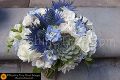 Hand Tied Wedding Bouquet Showcasing: Several Varieties Of White Roses, White Freesia + Buds, Blue Eryngium Thistle, Blue Delphinium, Green Succulents & Greenery/Foliage Delphinium Bouquet, Blue Delphinium, Thistle Bouquet, Blue Bouquet, White Spray Roses, White Roses, White Wedding Bouquets, Wedding Flowers, Bridesmaid Bouquets