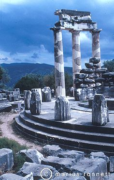 Seventh Crow my dear I have seen so many that I want to share with you.  A feast for the eyes.  Love to you  Delphi, Greece