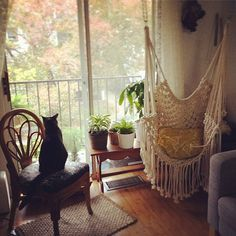"""That new macrame chair is just PERFECT for this space, Isabelle... I mean, a suspended scratching post I can climb AND nap in, festooned with dangling yarn toys? Excellent choice!"""