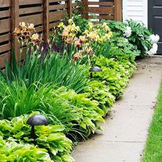 All gardening is landscape painting. William Kent #DesignInspo #Landscaping #Gardening