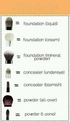 Face Study Makeup Brushes