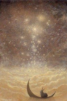 Toshio Ebine artist painting stars - Beauty will save Art And Illustration, Illustrations, Lapin Art, Drawn Art, Bunny Art, Moon Art, 3 Moon, Moon Shine, Nocturne
